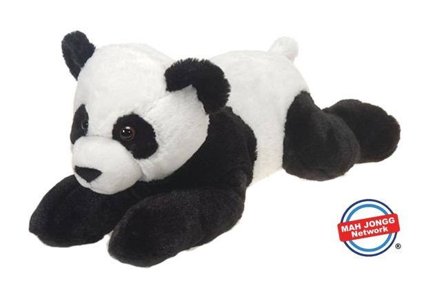 Panda Bear Fun Facts